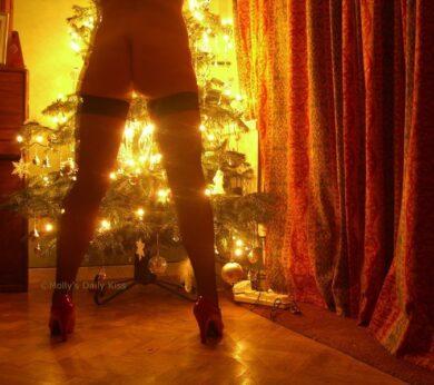 Fishnet stocking and christmas lights