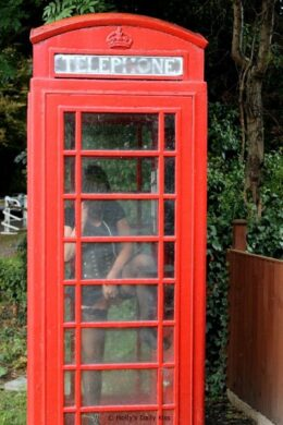 masturbating in red telephone box