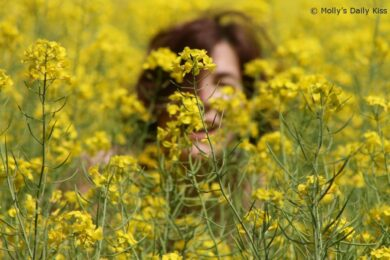 field of rapeseed naked woman