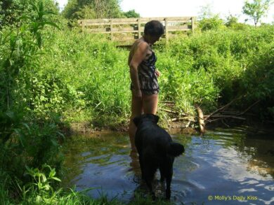 molly in stream with lingerie on and black dog