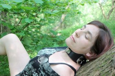 Collared slut laying on a tree