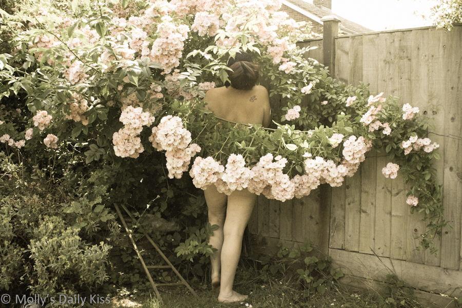 naked girl on rose garden