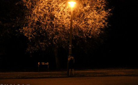 A Street Light Named Desire