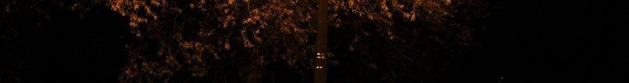 Under street light