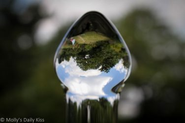 reflected world inverted in glass dildo