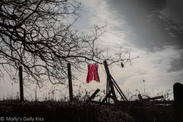 red Negligee hanging in the sunlight