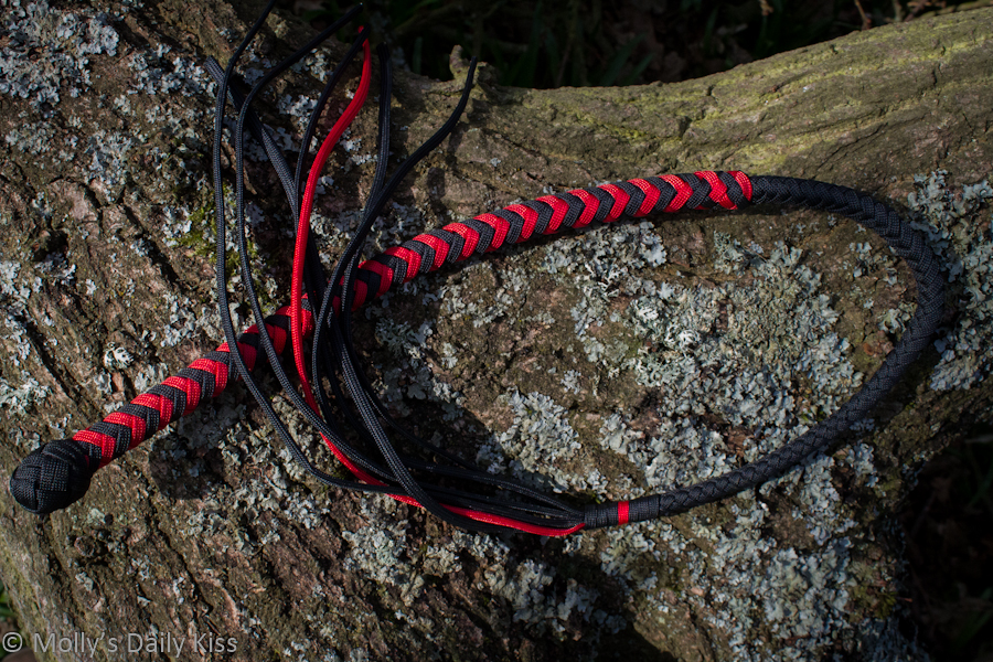 Black and red cat o nail tails whip