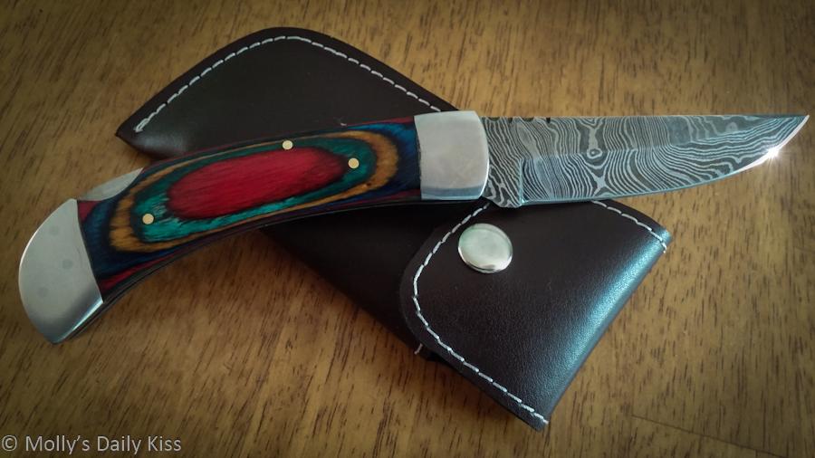 beautiful steel knife