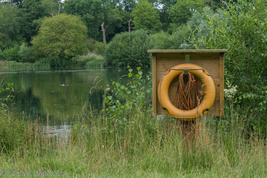 Life Bouy in Panshanger Country Park