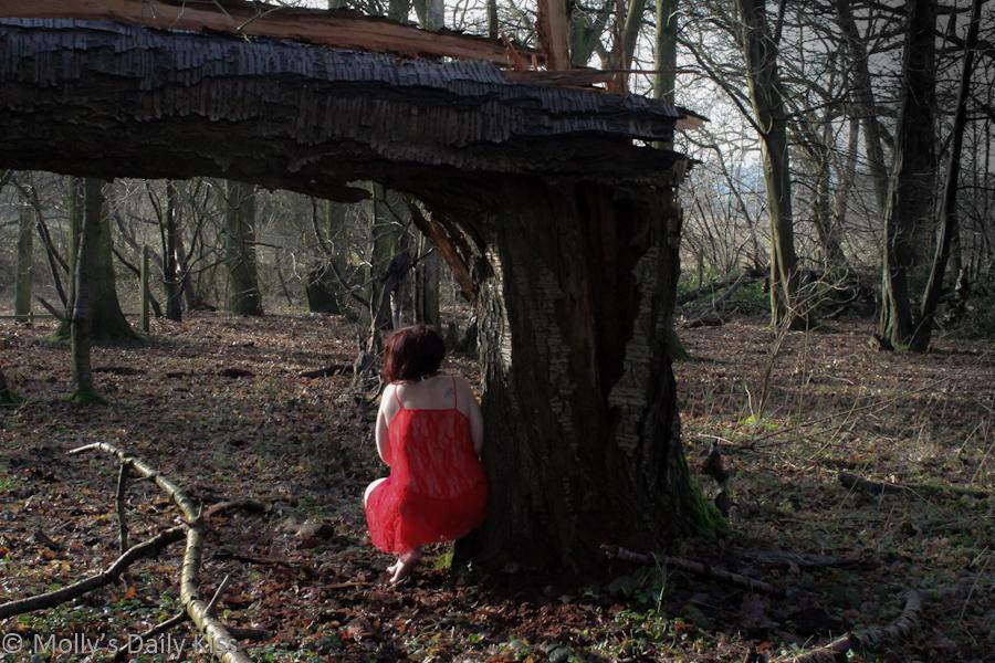 Crouched beneath fallen tree