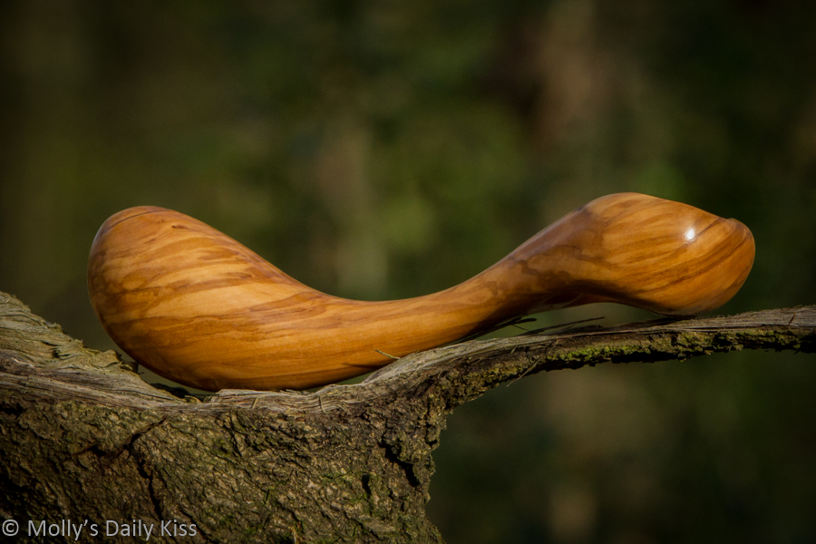 Wooden dildo in sunlight in the woods