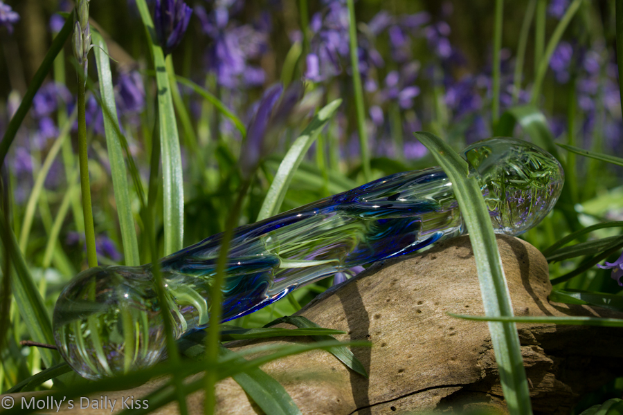 Glass dildo in the bluebells