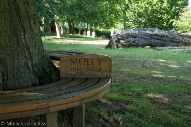 Molly bench in chruch yard