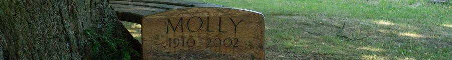 Molly bench in chruch yard