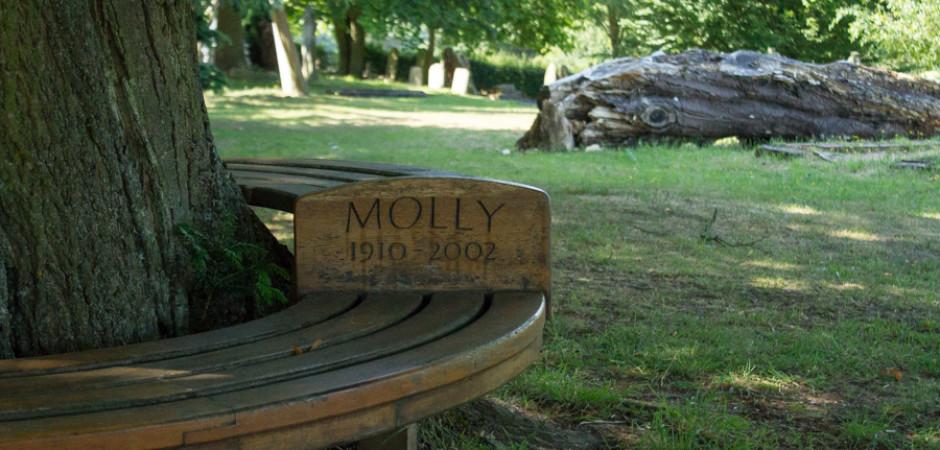 Molly's Bench