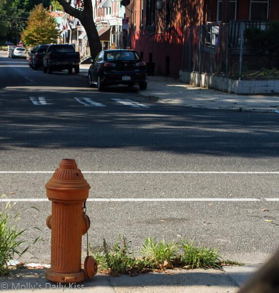 Fire Hydrant on street in Philadelphia