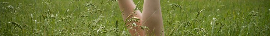Molly's legs in the air in long grass on a summers day