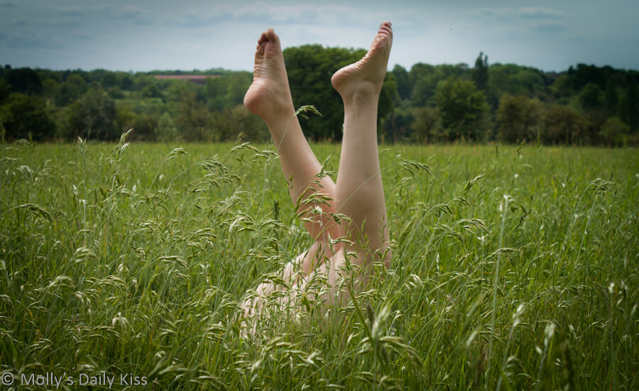 Molly's legs in the air in long grass