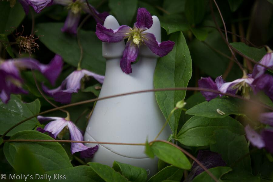 Eris vibrator by Perlesque in the garden