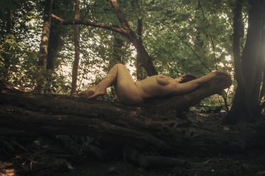 Molly laying naked on tree in autumn