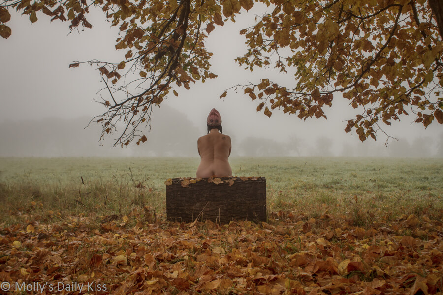 Molly sitting on a log in winter mist landscape wearing just a hat