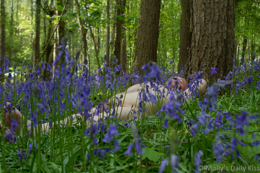 Michael laying naked in the bluebells