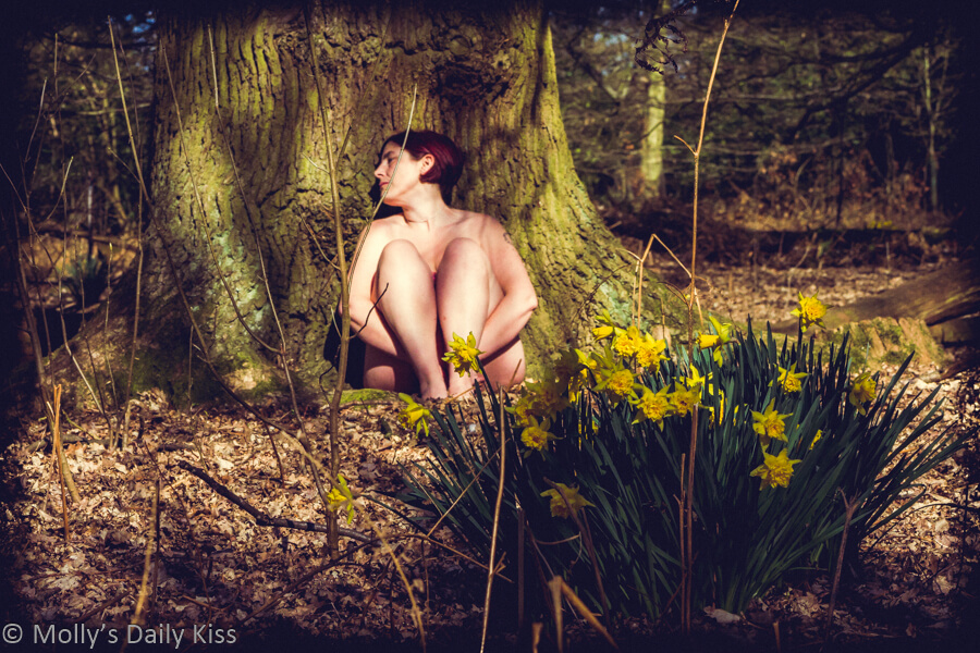 Molly sitting in pool of sunlight at the foot of a large tree with daffodils in the foreground