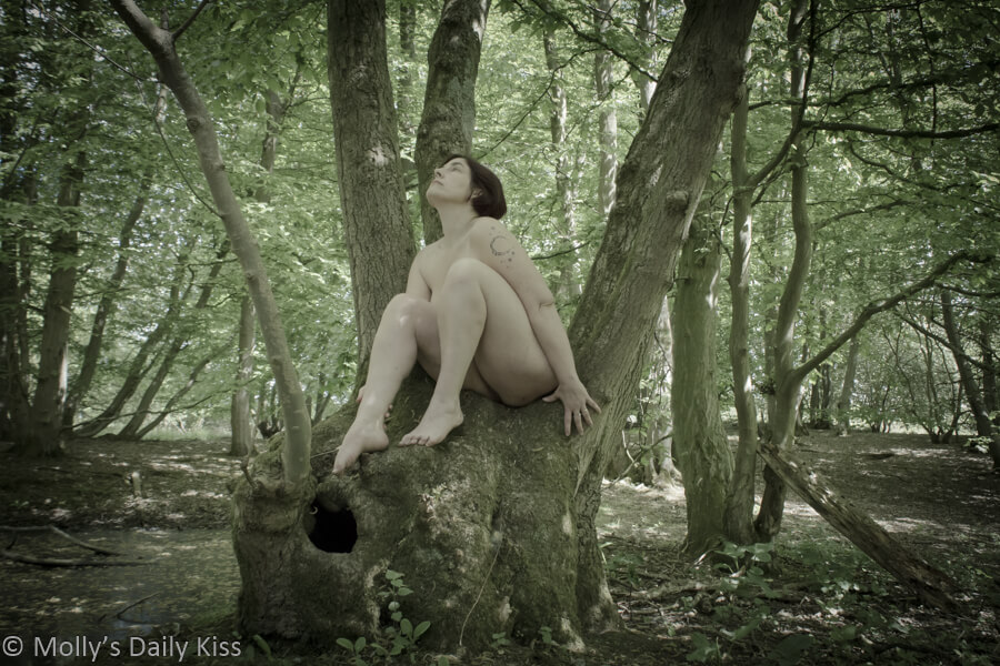 molly sitting naked in tree in springtime woodland