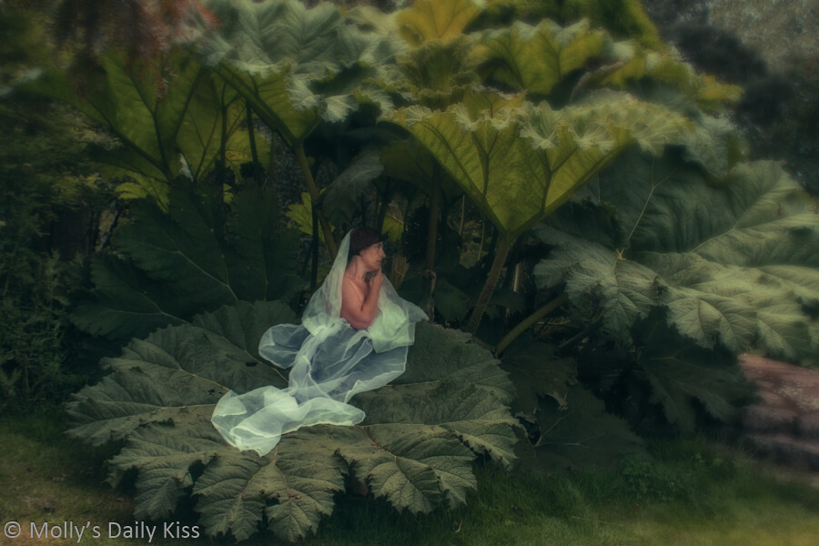 Molly sitting under giant leaves with white chiffon veil. Singest of summer