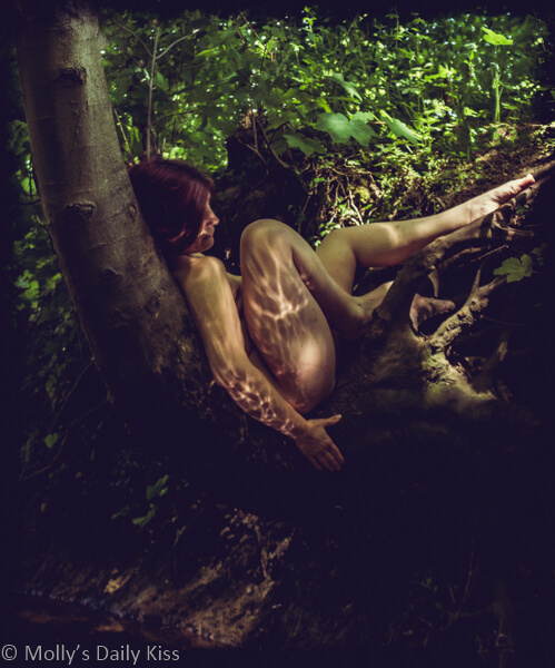 Molly sitting curled up in a tree with sunlight reflecting on the strwam below creating watery patterns on her skin