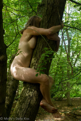 nude Woman clinging to tree like a Koala Bear