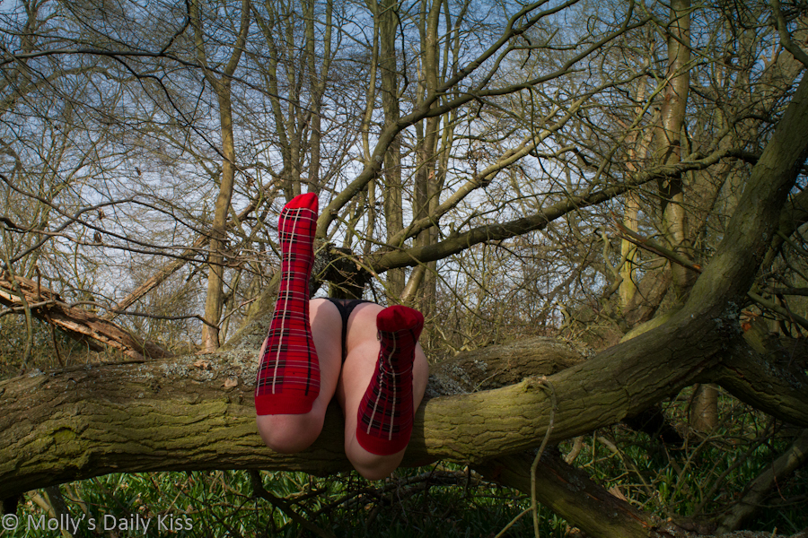 Molly in tarten knee high socks over fallen down tree