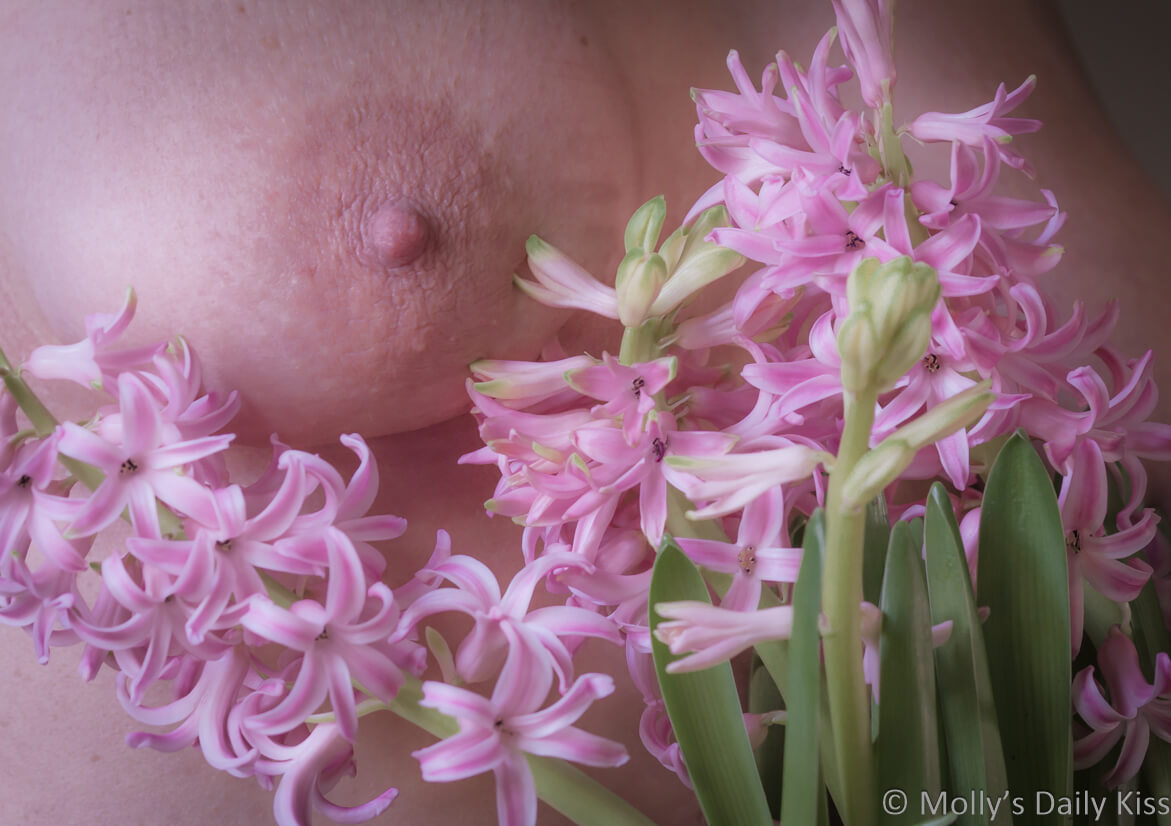 Molly's breast with pink hyacinth