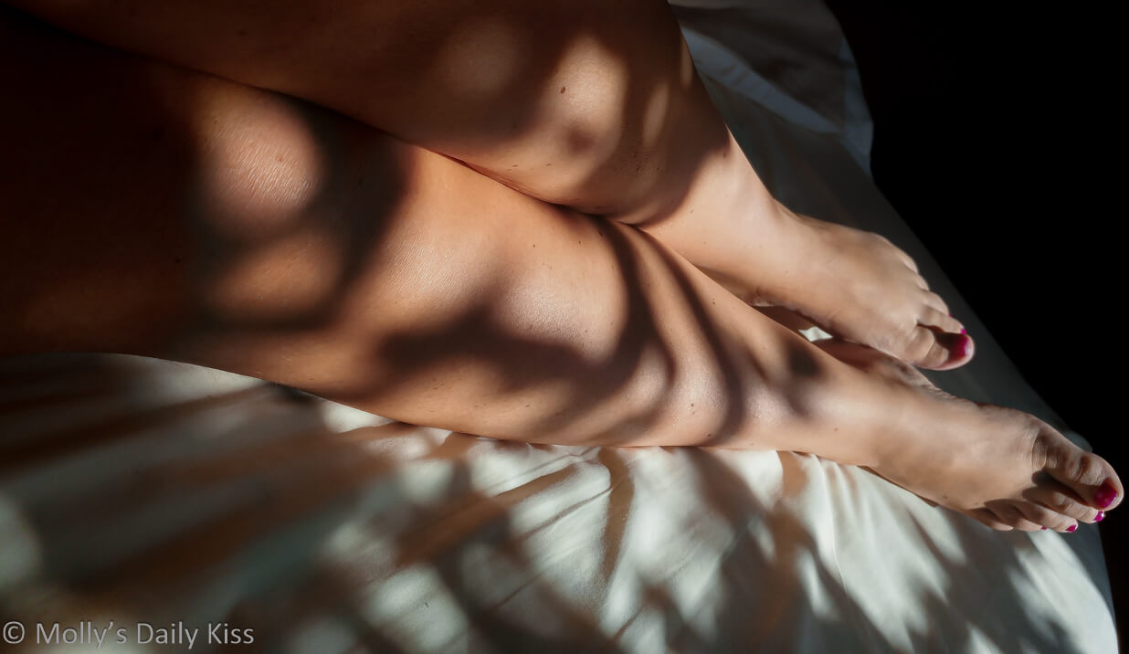 Molly's legs on the bed in dappled sunlight