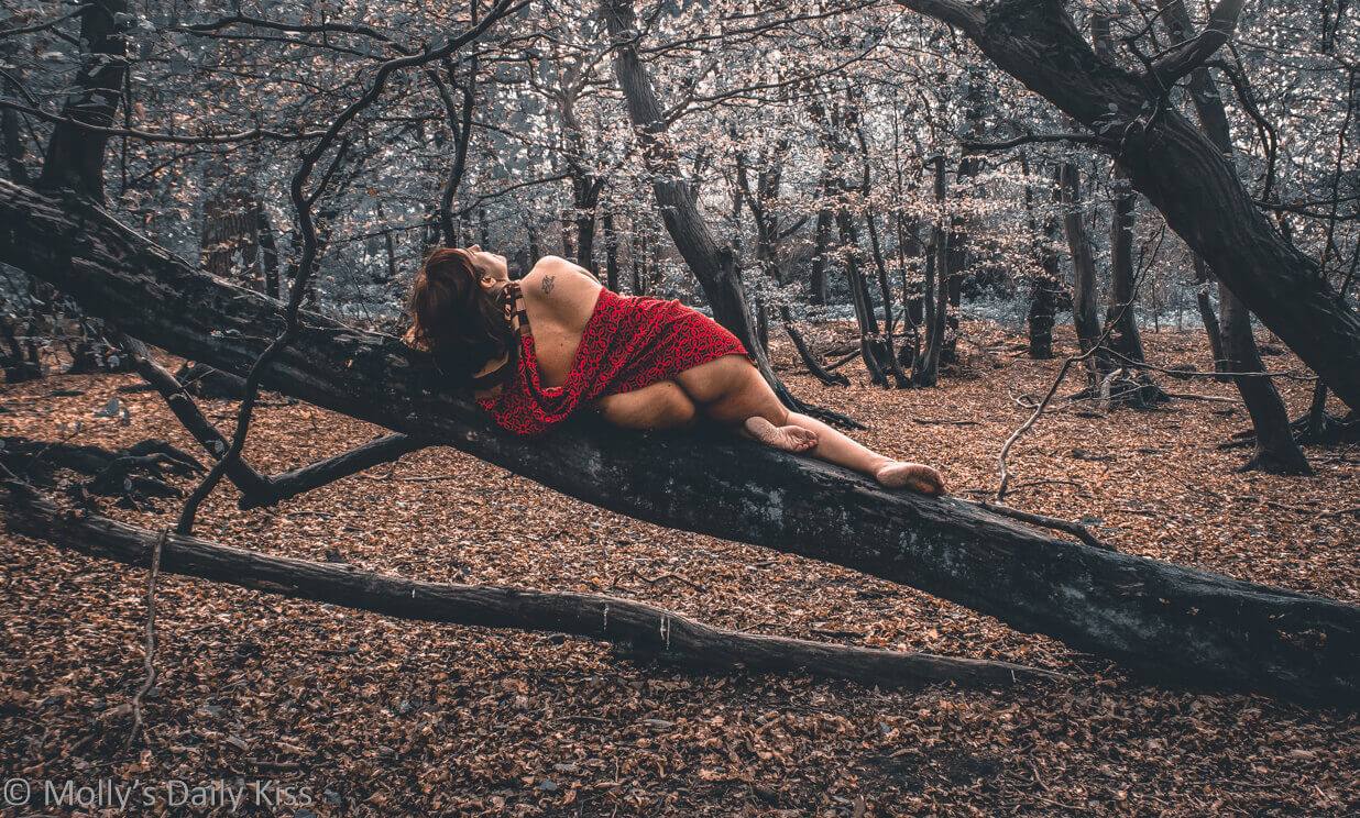 Molly laying on tree branch with her back to the camer with a red wrap round her waist and autumn leaves all around for a post called Picture-month