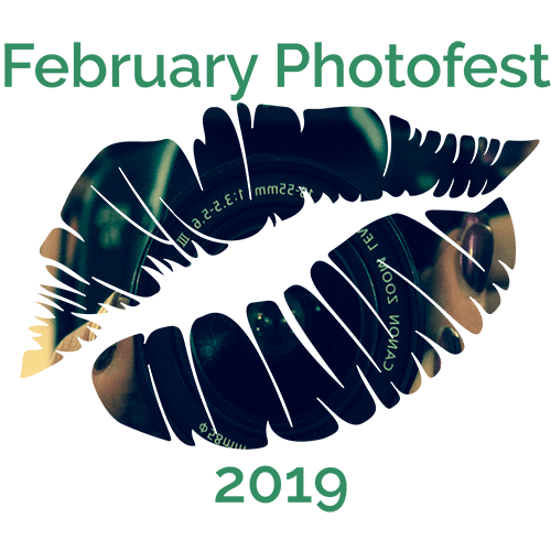 2019 February Photofest Badge Mollys Daily Kiss