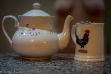 Tea pot and cup with molly topless in the background