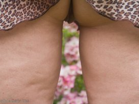 Mollys legs and vulva in focus and between her legs pink roses out of focus in the distance