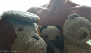 Molly and the Three Teddy Bears