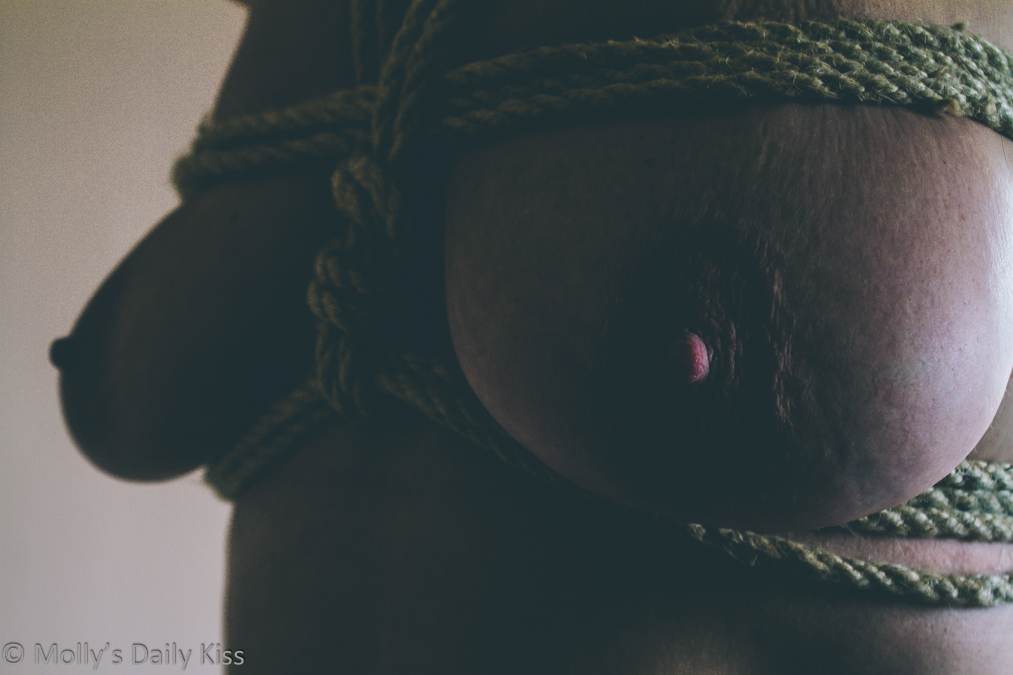 Molly wearing rope chest harness with light shining on one of her nipples and the other breast in dark contrast