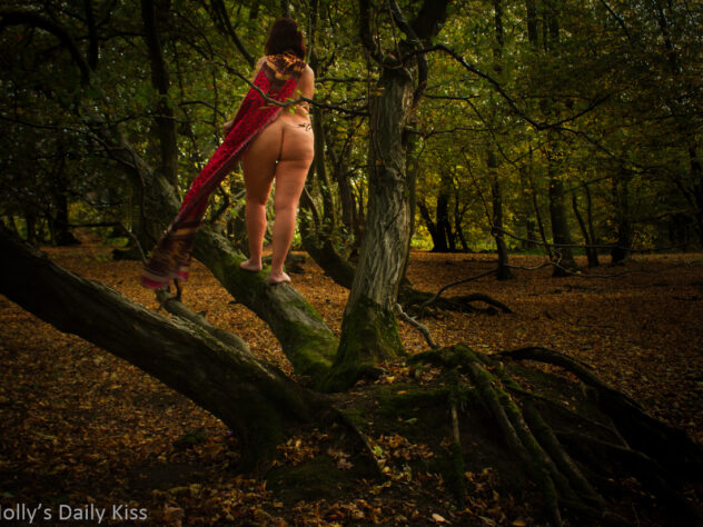Molly standing naked in tree with scarf blowing in the wind behind her for post about elemantal autumn wildness