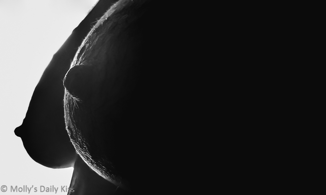 silhouette of mollys nipples and breasts in black and white for post called deviance