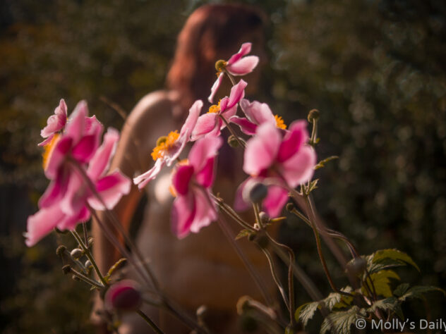 Nude of molly behind september days of late flowering Japanese anemone
