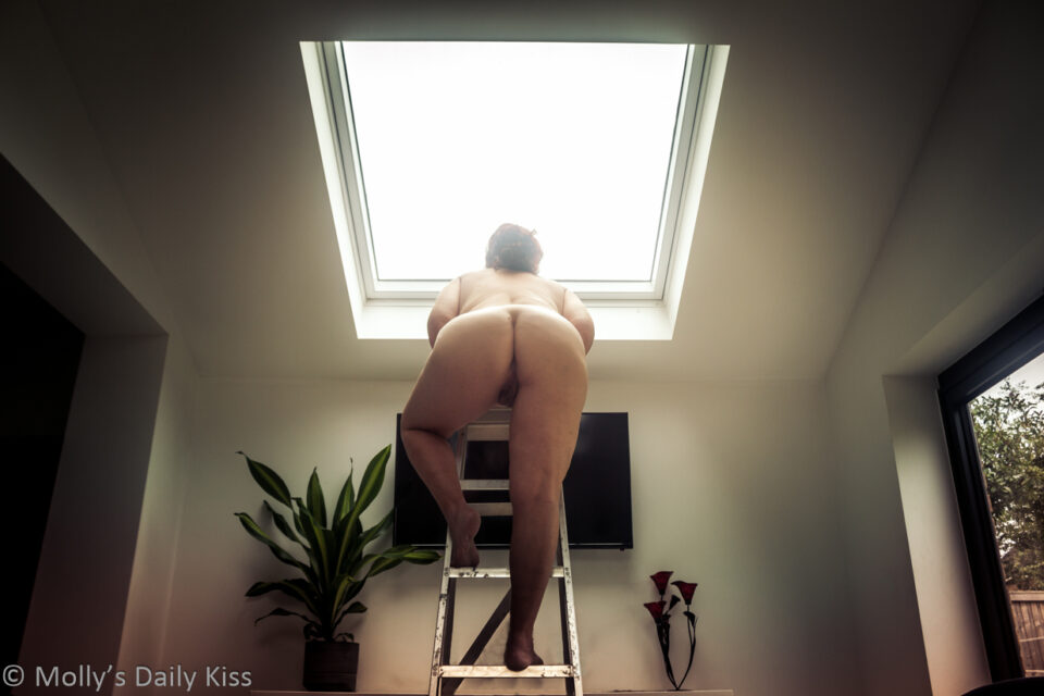 Naked molly climbing up a ladder into the sky light for post called wrong by wrong